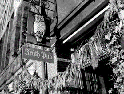 the owl n thistle sign