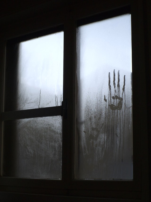 Bothell Hell House - Photo