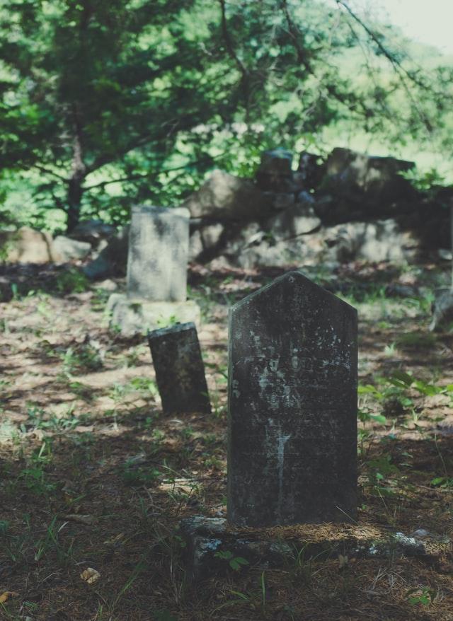 Comet Lodge Cemetery - Photo